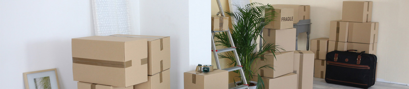 Home Packing Services